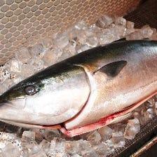 伊東魚港から直接買い付けの鮮魚