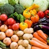 契約農家直送!新鮮な野菜【国内】