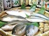 ★静岡港直送鮮魚★地元でも入荷量一の老舗の店舗から毎日入荷