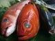 新鮮な産直鮮魚