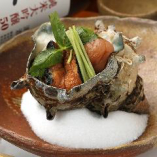 愛媛県三崎漁港から直送された厳選した季節の鮮魚【愛媛県】