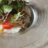 真鯛のカルパッチョ 塩こうじと山葵のヴィネグレット