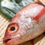 超美味!高級魚「喉黒」付 ぐるなび限定コースをご用意
