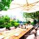 テラスで毛利庭園を眺めながら、ブッフェランチをお楽しみください!!
