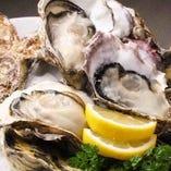 全国各地の選りすぐり!!新鮮な生牡蠣を堪能できる♪