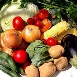 北海道直産の野菜は有機野菜のみの使用です!【北海道】