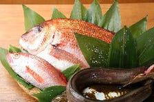市場直送◇新鮮魚介♪