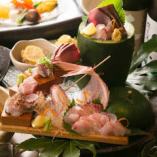 豊洲市場買い付け鮮魚の刺身4種盛り合わせ