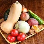 野菜ソムリエが選ぶ季節の野菜【その他全国各地から】