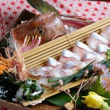本日の旬活魚