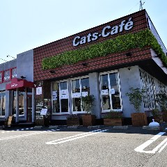 キャッツカフェ蒲郡店