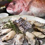クリーミー濃厚な牡蠣【広島】