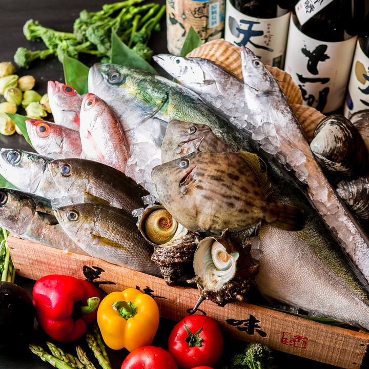 仲買人直営!漁港で直接仕入れるとびきり鮮度の良い魚をご提供!