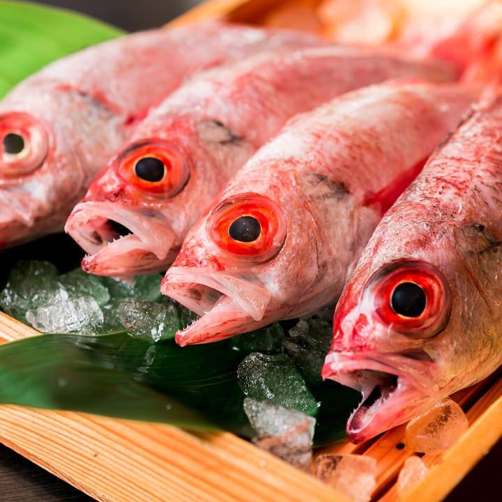 その日の朝獲れ鮮魚を直送! 何の魚が入るかはお楽しみ♪