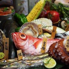 瀬戸内の旬をお造りでお届け!今月は明石鯛、サーモン、鰆炙り、たこぶつ、活鮑、活さざえ