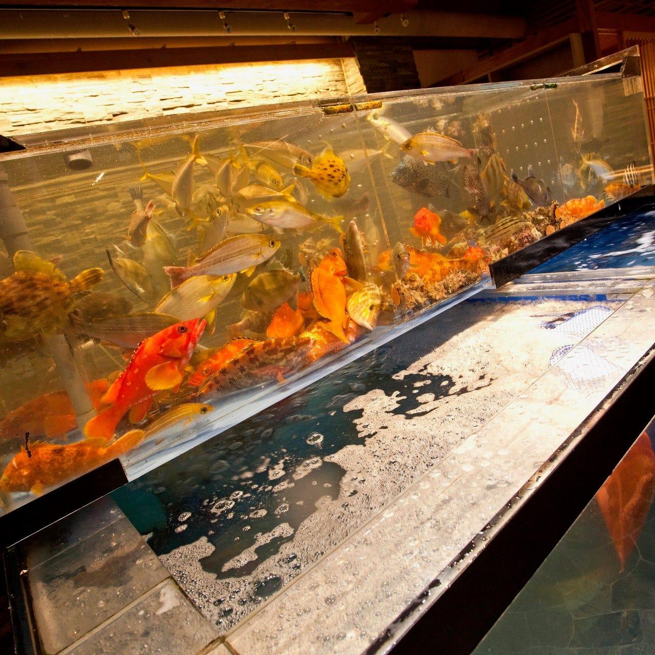 博多魚がし海の路 天神店