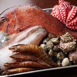 鳴門海峡の複数の海域でたくましく育った徳島産鮮魚【徳島県】
