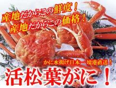 日本料理 松江 和らく