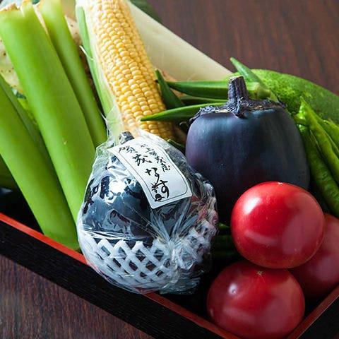 京都産の夏野菜。味わい濃厚。素材本来の美味しさを楽します。