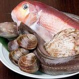 長崎県五島市より直送の天然鮮魚は、お造り、炭火焼で
