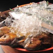 石巻仕入れの新鮮な魚介