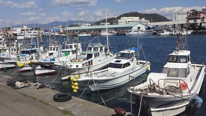 【新鮮鮮魚】沼津港ならでは漁港めし