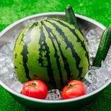 【冷やしトマト・きゅうり・スイカ】プールに氷を張って目の前で冷やしているラインナップからお選びいただけます