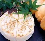 ワインの大親友 カマンベールチーズ