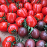 太陽の恵みをたっぷり受けた新鮮野菜を契約農家から取り寄せます