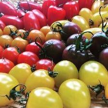自家製野菜と農家の新鮮野菜