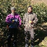 ノーワックスの『静岡産レモン』