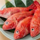 独自のルートで仕入れた鮮魚でしあってるお造りが自慢です