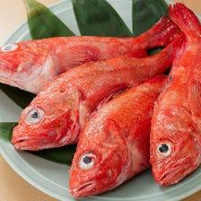 独自のルートで仕入れる上質な鮮魚