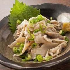 九州料理大衆酒場×手羽先×モツ鍋 エビス 菊名店