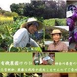 神奈川県愛川町〈有機農園けのひ〉