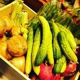 国分寺の地元でとれた野菜を使用したコースなど宴会にピッタリ!