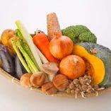 農家直送の瑞々しいお野菜たち【北海道】