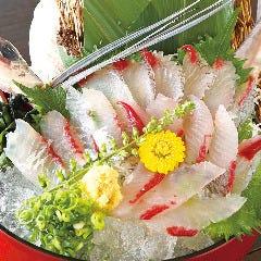 魚鮮水産 久米川南口店