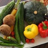 無農薬栽培の三芳村生産組合の野菜