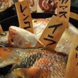 魚を食べなれた地元尾道の皆様にむけて、各地の魚の入荷も!