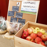 小岩井農場直送の新鮮なお野菜を店頭でも販売しております