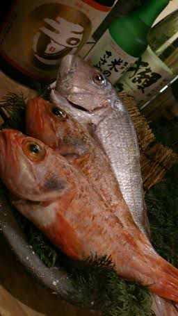 取り扱いが少ない「熟成魚」!!