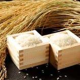 【至福の時】最高級の新潟県産コシヒカリの炊きたてご飯に感動