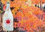 朝日酒造限定酒  越州 里紅葉 吟醸酒            ESSHU-SATOMOMIJI-GINJOUSHU