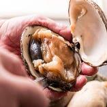 【貝料理】 旬の貝を刺身・蒸し・焼き・揚げ、様々な調理法で