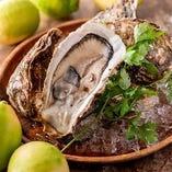 広島県産にこだわったフレッシュな牡蠣とレモン