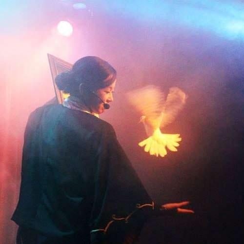マジックと言えば「鳩」!平和の象徴としても
