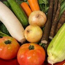旬の県内産有機野菜を使用