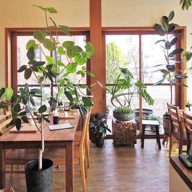 びー玉キッチン  店内の画像