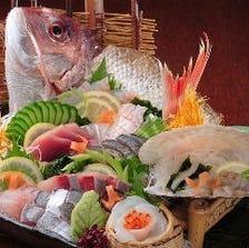 朝獲れ直送の天然鮮魚